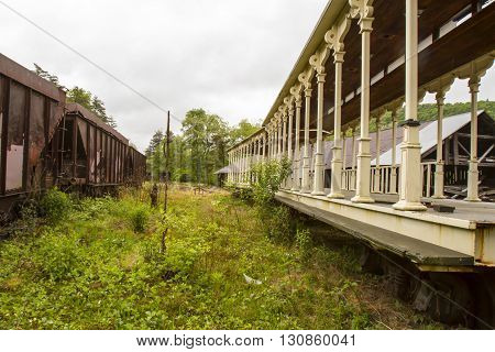 Railroad Cars On Overgrown Tracks