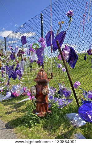 CHANHASSEN, MINNESOTA, May 13, 2016: Memorials of flowers, balloons, and purple decorate the fence around Paisley Park, the home of Prince Rogers Nelson.