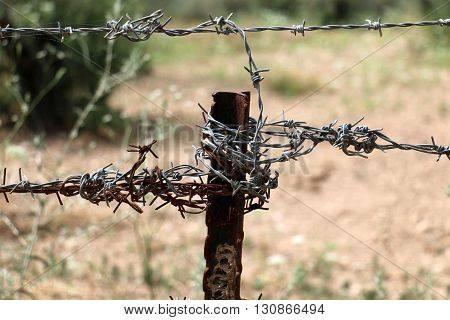 an iron pillar and is wound coiled barbed steel wire