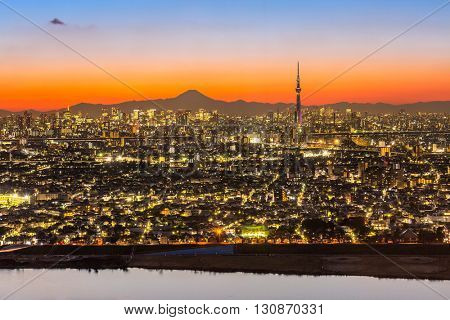 Tokyo city aerial view and mountain fuji