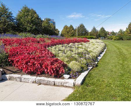 Formal flower beds in park under blue sky