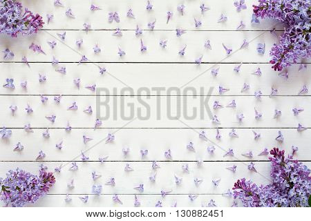 Lilac flowers pattern on white wooden background and copy space for text. Flat lay of purple lilac flowers on white backdrop, flat lay
