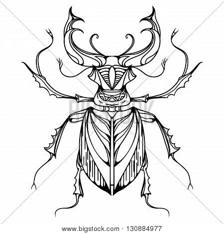 Hand drawn vintage stag beetle. Insect with doodle pattern. Vector element for tattoo sketch printing on T-shirts postcard and your design