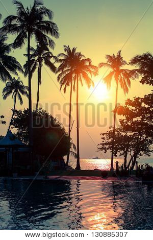 Silhouettes of palm trees during a tropical amazing sunset.