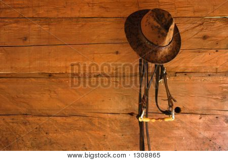 Hat And Bridle