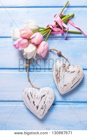 Tender white and pink spring tulips and two decorative hearts on blue wooden background. Pastel colors. Shabby chic. Selective focus.