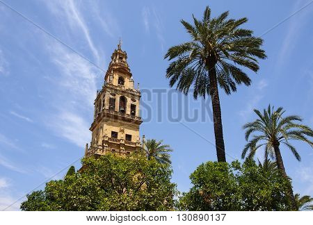View of the bell tower and former minaret of the Mosque-Cathedral of Cordoba against a clear blue sky in Andalusia Spain. Two palm trees