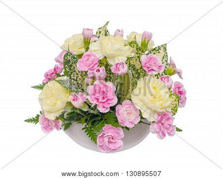 Carnation flower in vase isolated over white background