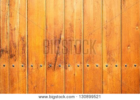wood texture background with a line of nails
