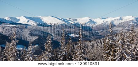 Majestic landscape glowing by sunlight in the morning. Dramatic wintry scene. Place location Carpathian national park, Ukraine, Europe. Alps ski resort. Beauty world. Happy New Year!
