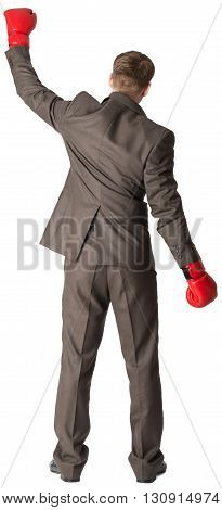 Businessman with boxing gloves, rear view. Isolated on white background