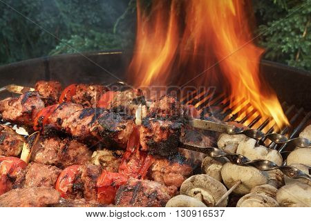 Mixed With Vegetables Kababs And Mushrooms On Flaming Bbq  Grill
