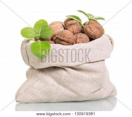 Bag with whole walnuts isolated on white background.