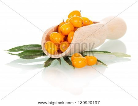Ripe sea-buckthorn berries in a wooden scoop isolated on white background.