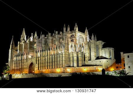 Cathedral of Santa Maria of Palma and Parc del Mar near Majorca Spain at night