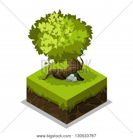 Isometric nature land grass and tree in vector