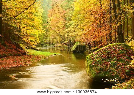 Big Boulders With Fallen Leaves. Autumn Mountain River Banks. Fresh Green Mossy Boulders And River B