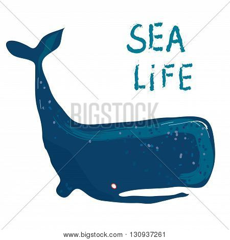Whale card - illustration for the sea life or travel graphic vector