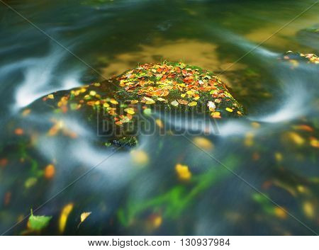 Colorful Aspen Leaves On Boulder In Mountain Stream. Clear Water Blurred By Long Exposure, Reflectio