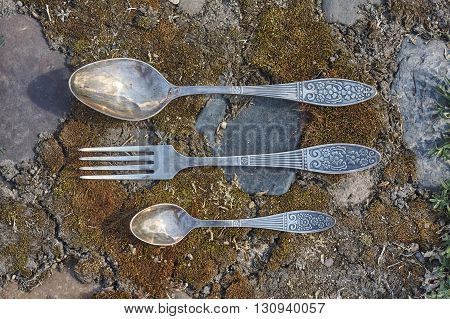 little spoon fork and big spoon on moss and stone background close up
