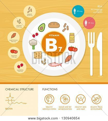 Vitamin B7 nutrition infographic with medical and food icons: diet healthy food and well being concept