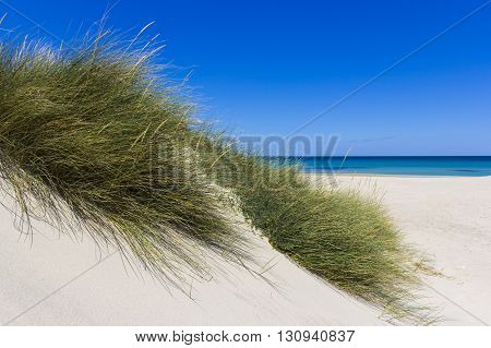 Salento Lecce: the sea the beach and sand dunes