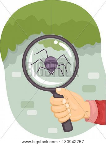 Illustration of a Kid Using a Magnifying Glass to Examine a Spider