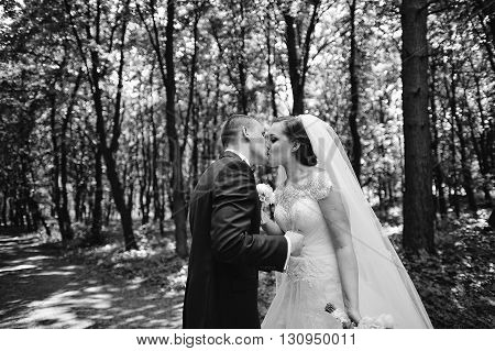 Groom With Bride Holding Wedding Glasses Of Champagne And Kissed At Wooden Forest. B&w Photo