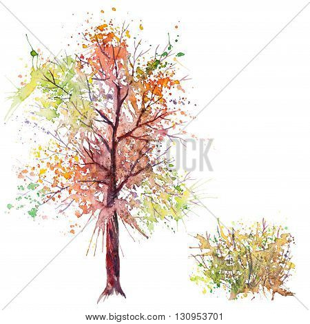 Big hand drawn watercolor splash green orange autumn tree and shrub, isolated on the white background