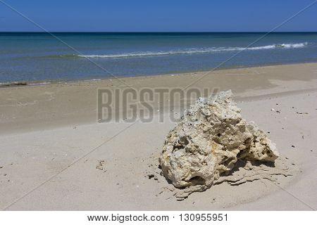 Sand beach of Salento, rock on foreshore