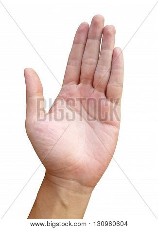 close up man hand on white background