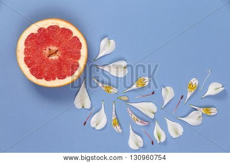 Collage of grapefruit and cuved white flower petals on a blue background
