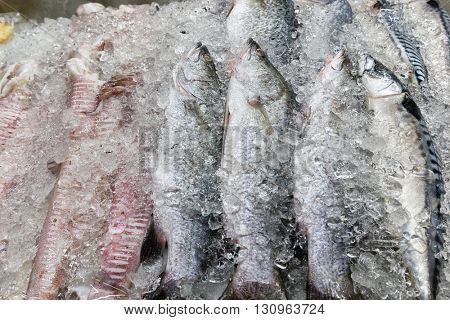 Fresh fishes and squid on ice in a Thai market stall, Thailand