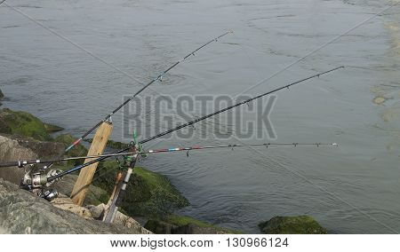 Three fishing rods are set up and ready to catch fish.