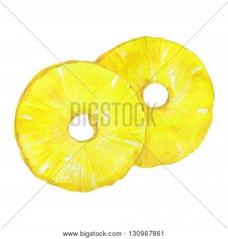 slices of pineapple watercolor illustration on white background