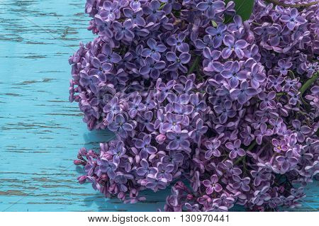branch of lilac on the table in the street