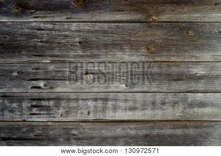 The old wood paneling. Location horizontal. The background. Darkened by the time the tree. Rustic. Close-up.
