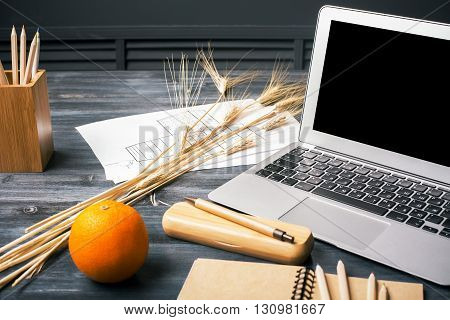 Creative designer desktop with blank laptop screen stationery orange wheat spikes and construction sketch. Mock up