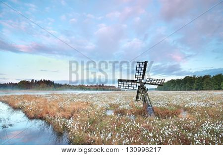 old wooden windmill on swamp with cotton grass at sunrise Drenthe Netherlands