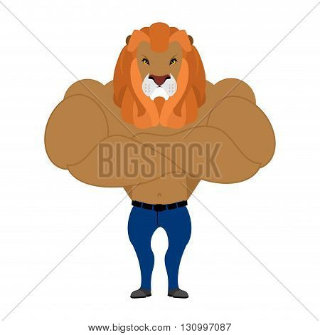 Strong Lion King Of Beasts. Wild Animal Athlete Athlete. Leo Fitness. Serious Bodybuilder With  Larg