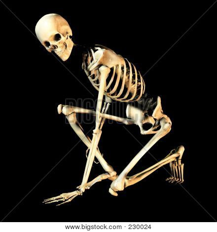 Bone Pose 5