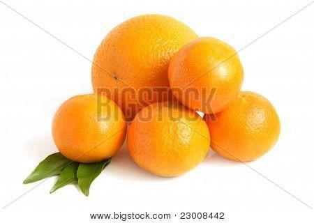 Orange And Tangerines