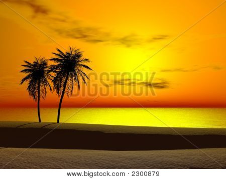 Sunrise tropical