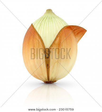 Onion, Creative Concept