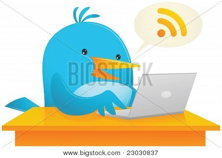 Blue Bird Using Computer