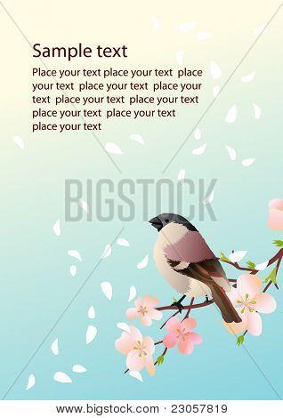 Background with blossom and bird