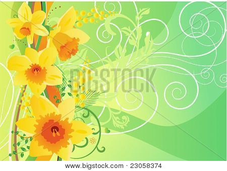 Floral daffodil spring background