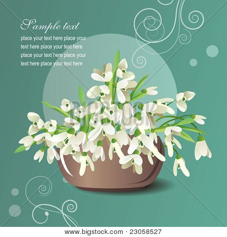 Vector greeting card with bowl of white fresh snowdrops