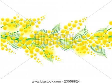 Seamless horizontal spring mimosa pattern