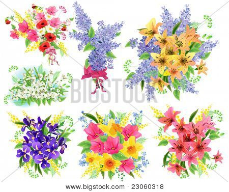 Collection of detailed beautiful bunches of flowers